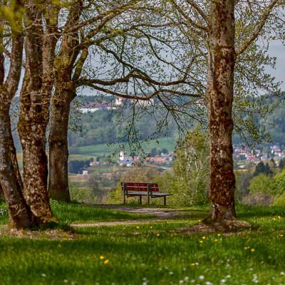 Wilhelmshöhe Bank Aussicht über Leutkirch