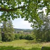 Leutkircher Stadtwald