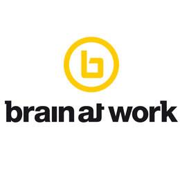 brain at work Internetagentur Webdesign Allgäu Oberschwaben Bodensee