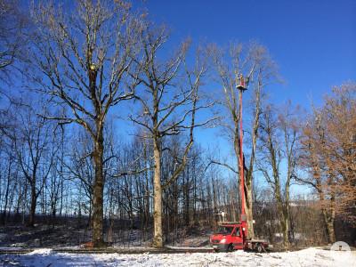Baustelle Felderhalde in Isny Todholz entfernung