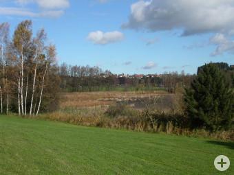 Uferzone Ellerazhofer Weiher