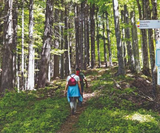 Wandern in der Adelegg