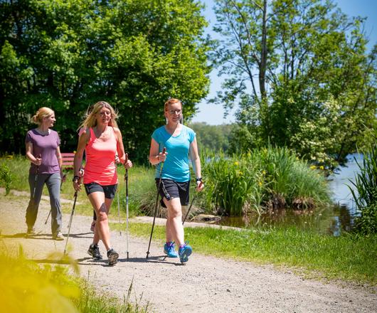 Damengruppe beim Nordic Walking